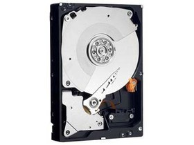 西部数据2TB 7200转 64MB SATA3 黑盘(WD2002FAEX)